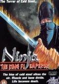 The Ninja 海报