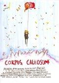 Corpus Callosum 海报