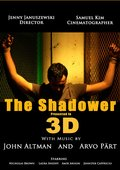 The Shadower in 3D 海报