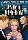 The Animal Kingdom 海报