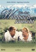 Wo der Wildbach rauscht 海报