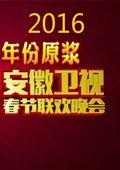 2016安徽卫视春节联欢晚会