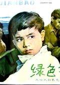 绿色钱包 海报