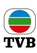 2013TVB新春黃金慶典