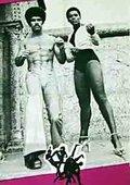 Black Belt Jones 海报