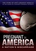 Pregnant in America 海报