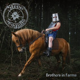 Steve 'N' Seagulls -《Brothers In Farms》[MP3]