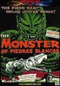 The Monster of Piedras Blancas 海报