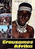Secret Africa 海报