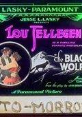 The Black Wolf 海报