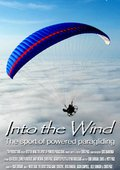 Into the Wind 海报