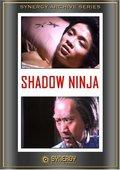 Shadow Ninja 海报