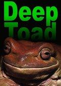 Deep Toad 海报