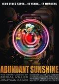 Abundant Sunshine 海报