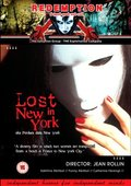 Lost in New York 海报