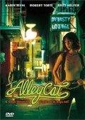 Alley Cat 海报