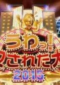 2015夏季日本整人大赏 海报