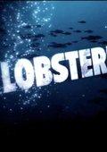 真人秀:捕虾人 第一季 海报