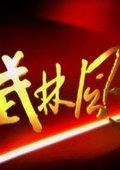 武林风 海报