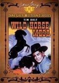 Wild Horse Mesa 海报