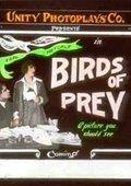 Birds of Prey 海报