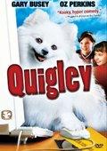 Quigley 海报