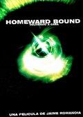 Homeward Bound 海报