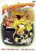 Firehouse 海报