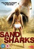 沙海狂鲨 海报