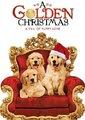 圣诞寻缘犬