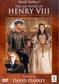 英国电视四台:亨利八世的六任妻子 海报