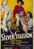 Silver Stallion 海报