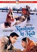 Kashmir Ki Kali 海报