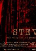 Steves 海报