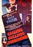 Calling Bulldog Drummond 海报