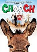 Chooch 海报