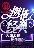 2015天津卫视跨年晚会 海报