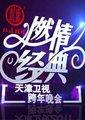 2015天津卫视跨年晚会