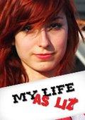 真人秀:莉斯的高中生活 第一季 海报