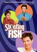 Shooting Fish 海报