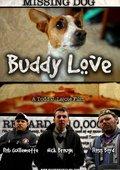 Buddy Love 海报