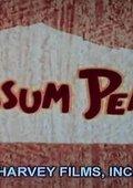 Possum Pearl 海报