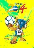 巴西世界杯全程