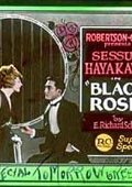 Black Roses 海报