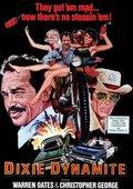 Dixie Dynamite 海报