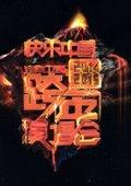 2014-2015湖南卫视跨年演唱会 海报