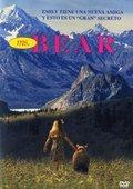 Ms. Bear 海报