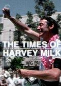 哈维·米尔克的时代 海报