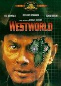 西部世界 海报