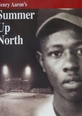 Henry Aaron's Summer Up North 海报
